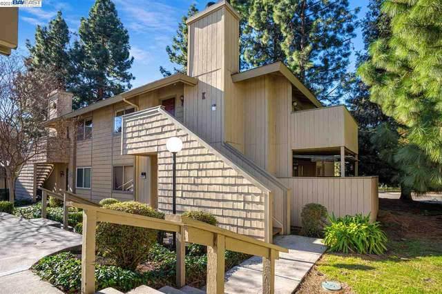 46875 Fernald Cmn, Fremont, CA 94539 (#40936366) :: Excel Fine Homes