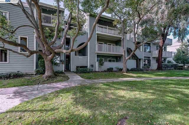 3685 Nutwood Ter #213, Fremont, CA 94536 (#40937310) :: Excel Fine Homes