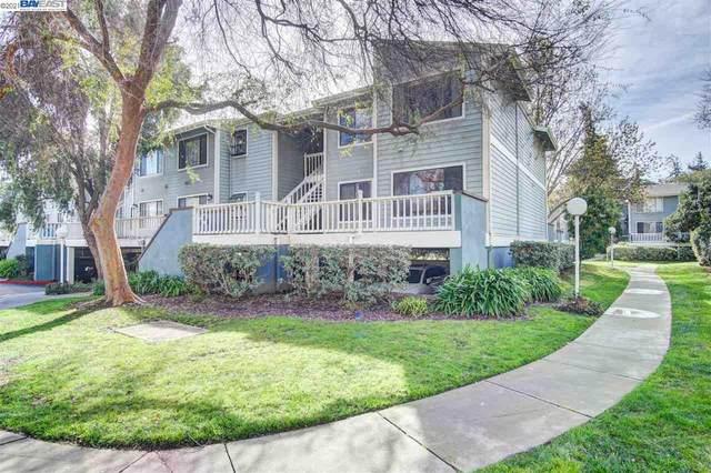 3453 Baywood Ter #206, Fremont, CA 94536 (#40938046) :: Excel Fine Homes