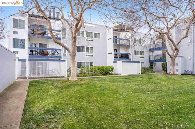 1025 Shell Blvd #11, Foster City, CA 94404 (#40938399) :: The Grubb Company