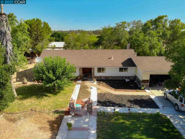 1171 Grapevine Ln, Oakley, CA 94561 (#40939166) :: Jimmy Castro Real Estate Group