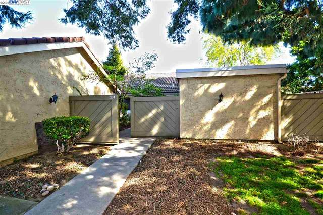 204 Truckee Ln, San Jose, CA 95136 (#40939201) :: Jimmy Castro Real Estate Group