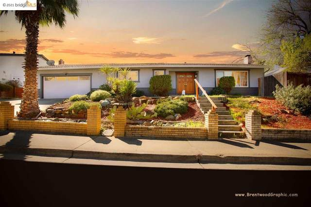 2900 Camby Rd, Antioch, CA 94509 (#40939226) :: Blue Line Property Group
