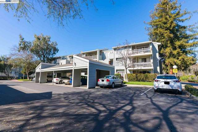3507 Buttonwood Ter #304, Fremont, CA 94536 (#40939418) :: Jimmy Castro Real Estate Group