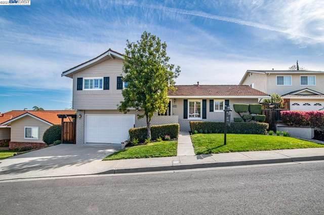 548 Gerard Court, Pleasanton, CA 94566 (#40940290) :: Armario Homes Real Estate Team