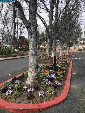 505 Allegheny Dr, Walnut Creek, CA 94598 (#40942101) :: The Lucas Group