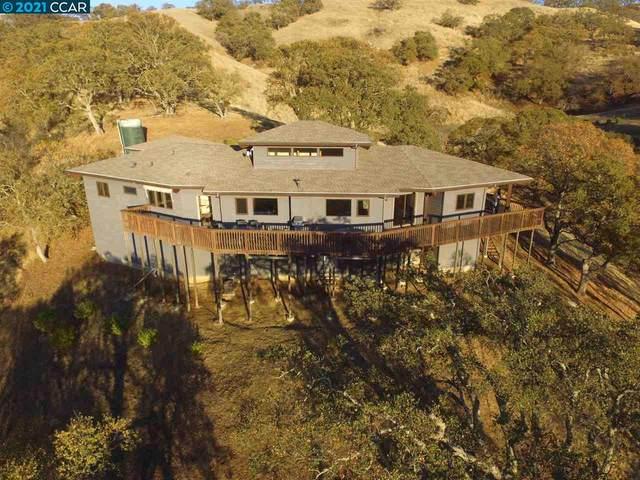 411 Meadow View Ln, Clayton, CA 94517 (#40942781) :: The Venema Homes Team