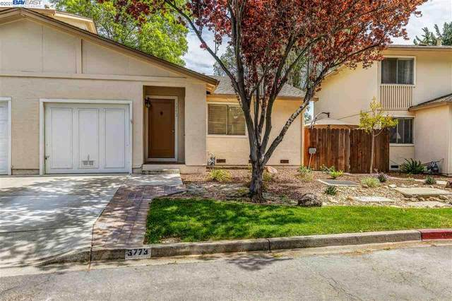 3773 Thistle Way, Pleasanton, CA 94588 (#40943983) :: Realty World Property Network