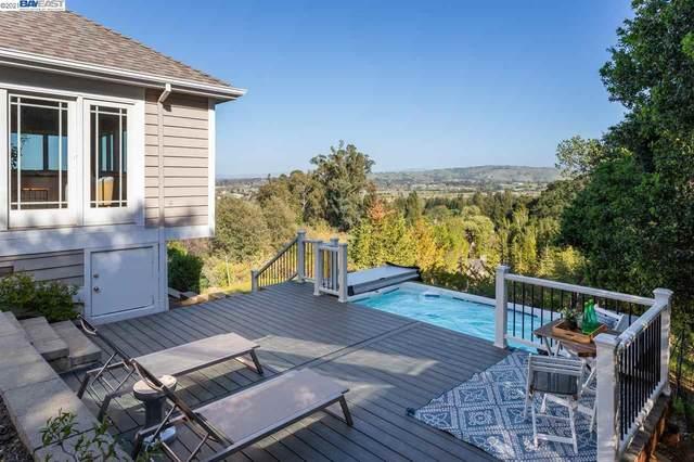 20 Deer Oaks Ct, Pleasanton, CA 94588 (#40944797) :: The Venema Homes Team
