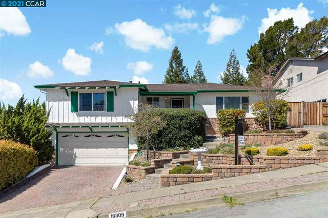 18309 Maffey Dr, Castro Valley, CA 94546 (#40944909) :: Armario Homes Real Estate Team