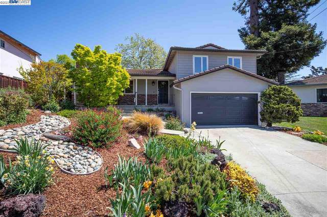 18316 Maffey Drive, Castro Valley, CA 94546 (MLS #40945877) :: 3 Step Realty Group