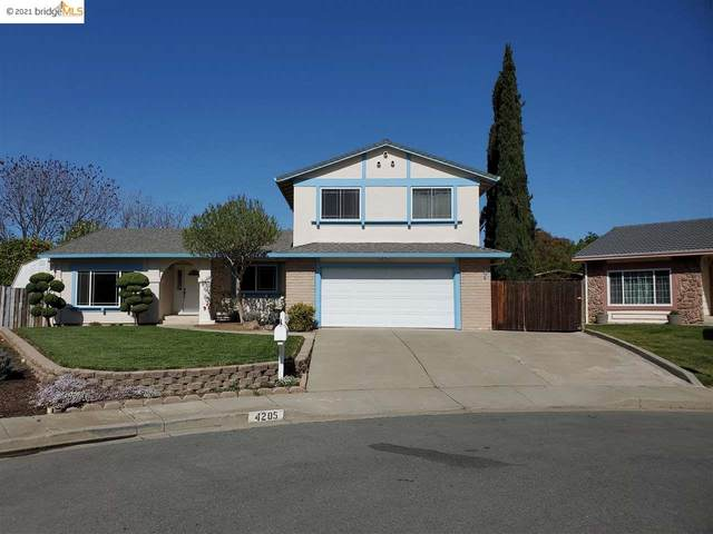 4205 Suzanne Dr, Pittsburg, CA 94565 (#40945942) :: Excel Fine Homes