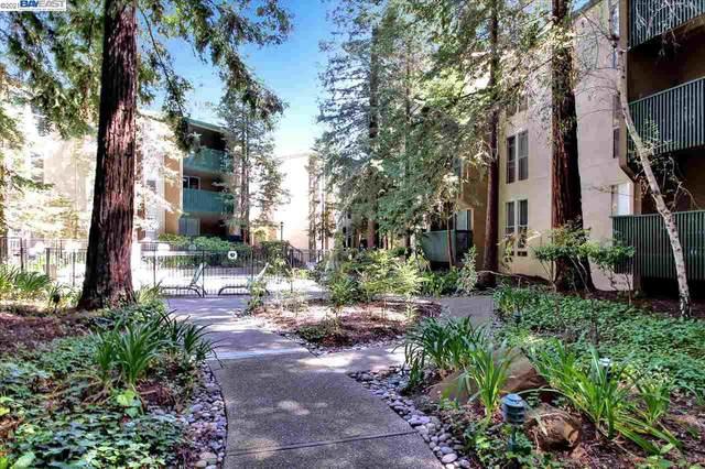 Walnut Creek, CA 94596 :: Armario Homes Real Estate Team