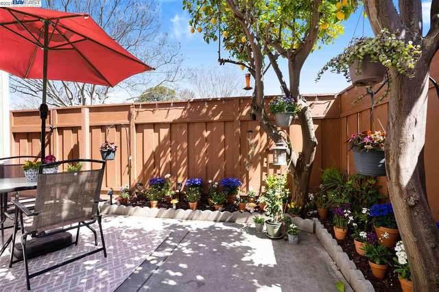 4608 Millbrook Ter, Fremont, CA 94538 (#40946605) :: The Venema Homes Team