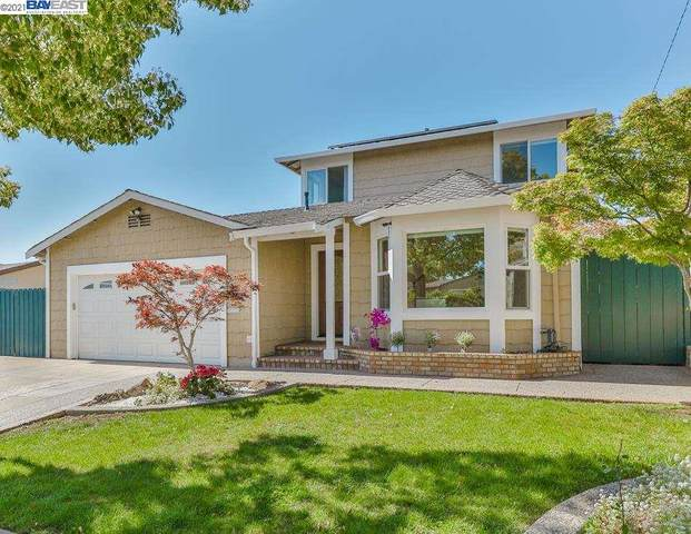 219 Lippert Ave, Fremont, CA 94539 (#40947050) :: The Lucas Group