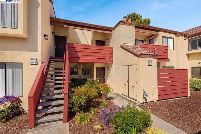 3809 Milton Terrace, Fremont, CA 94555 (#40947669) :: MPT Property
