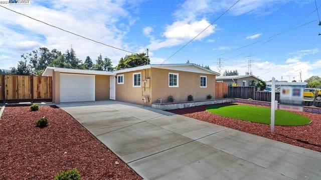 3244 Rockett Drive, Fremont, CA 94538 (#40948400) :: The Lucas Group