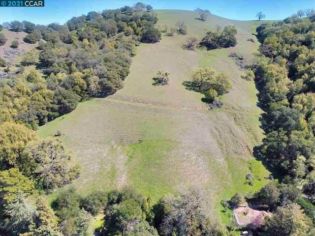 11 Sequoia Way, Martinez, CA 94553 (#40948443) :: RE/MAX Accord (DRE# 01491373)