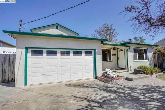 6676 Mayhews Landing Rd, Newark, CA 94560 (#40948493) :: Armario Homes Real Estate Team