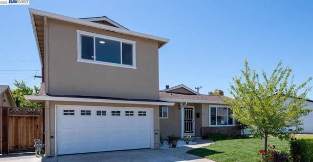 5461 Borgia Rd, Fremont, CA 94538 (#40948627) :: The Venema Homes Team