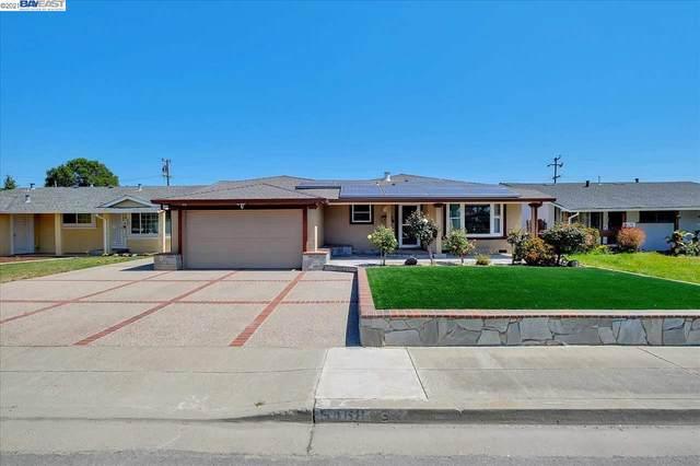 5468 Borgia Rd, Fremont, CA 94538 (#40948785) :: Blue Line Property Group