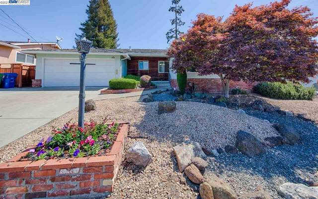 22254 Morales Ct, Castro Valley, CA 94546 (#40948917) :: The Grubb Company