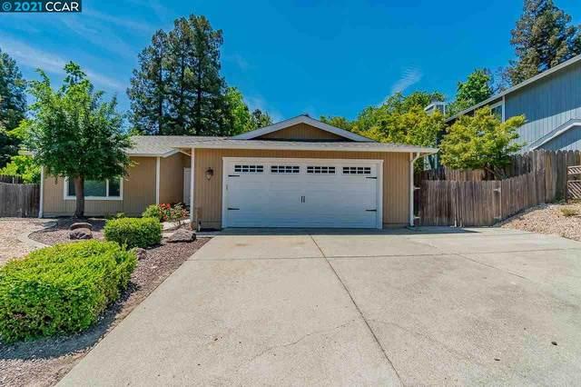 1278 Hatchwood Ct, Martinez, CA 94553 (#40949908) :: Blue Line Property Group