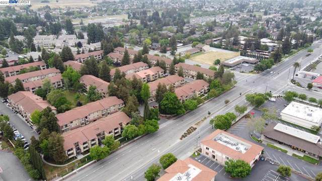 62 Shaniko Cmn #90, Fremont, CA 94539 (#40951405) :: MPT Property
