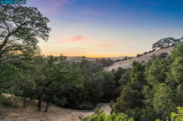3 Lucas Ct, Lafayette, CA 94549 (#40951841) :: Swanson Real Estate Team | Keller Williams Tri-Valley Realty