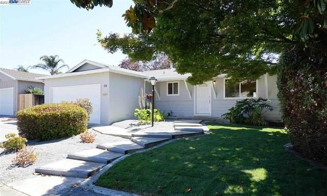 47447 Hoyt St, Fremont, CA 94539 (#40953020) :: MPT Property