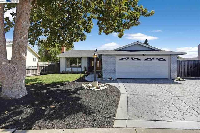 4129 Rosalita Ct, Fremont, CA 94536 (#40953373) :: MPT Property