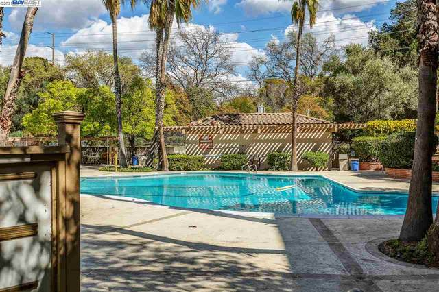 420 N Civic #205, Walnut Creek, CA 94596 (#40953395) :: Real Estate Experts