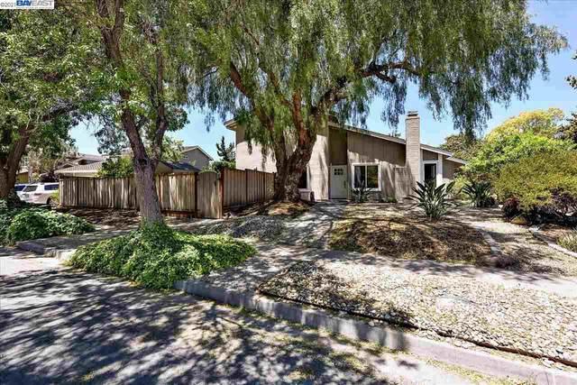 39225 Zacate Ave, Fremont, CA 94539 (#40953527) :: The Venema Homes Team