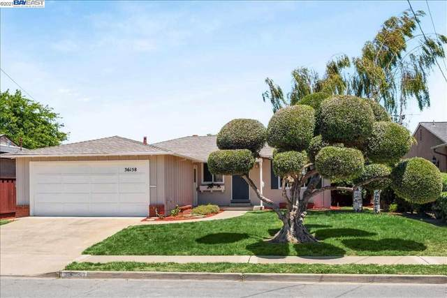 36158 San Pedro Drive, Fremont, CA 94536 (#40953705) :: MPT Property