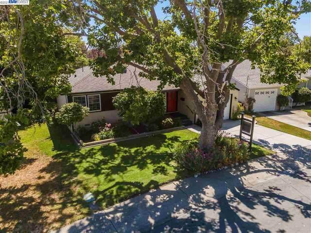 17061 Via Perdido, San Lorenzo, CA 94580 (#40954371) :: MPT Property