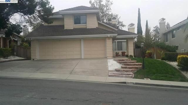 2040 Springwater Drive, Fremont, CA 94539 (#40954531) :: MPT Property
