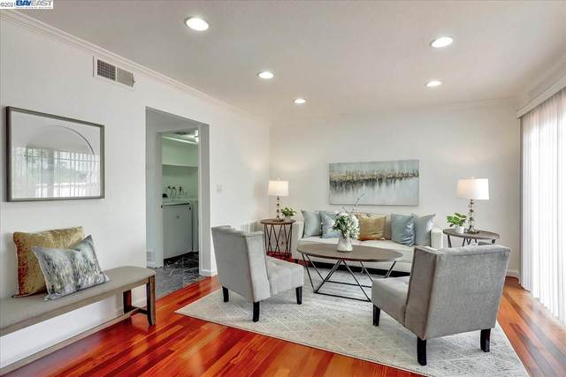 4419 Viejo Way, Union City, CA 94587 (#40954766) :: MPT Property