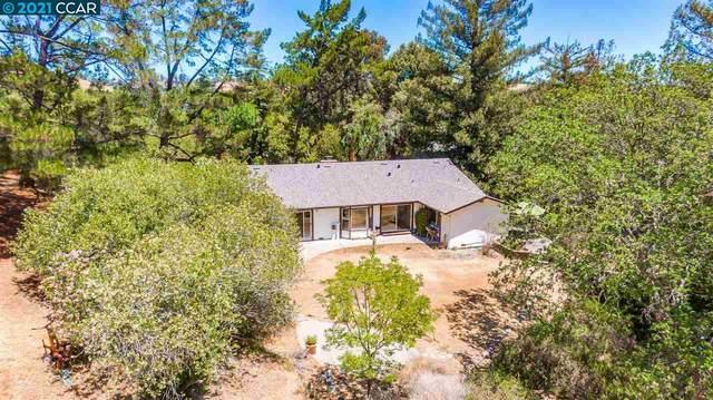 325 Pikes Ct, Martinez, CA 94553 (#40954807) :: MPT Property