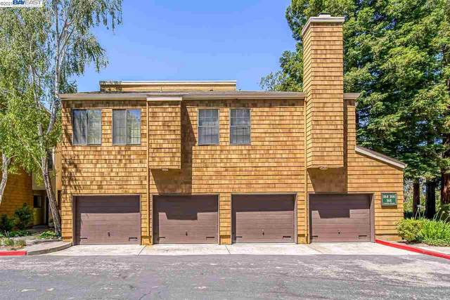 170 Copper Ridge Rd, San Ramon, CA 94582 (#40954841) :: Realty World Property Network