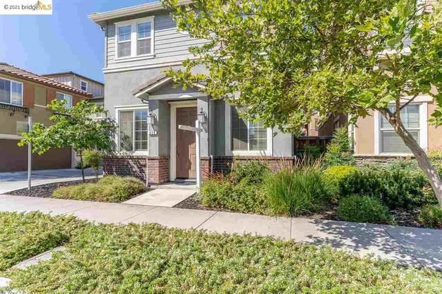839 Fan Palm Ln, Brentwood, CA 94513 (#40955235) :: Realty World Property Network