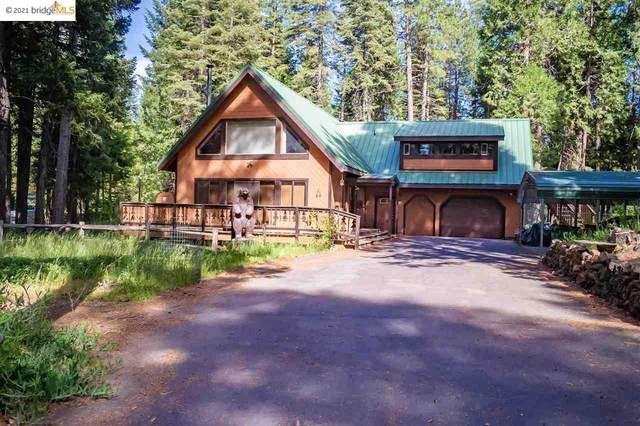 8238 Starlite Pines Road, SHASTA, CA 96088 (#40955285) :: Excel Fine Homes
