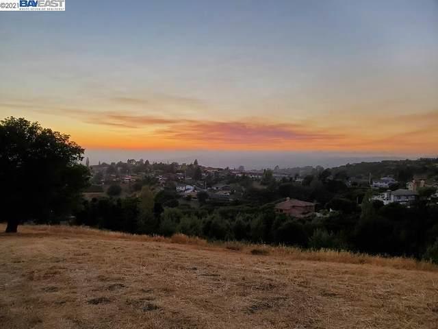 Arbutus Ct, Hayward, CA 94542 (#40955310) :: MPT Property