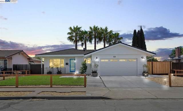 6366 Stonecress Ave, Newark, CA 94560 (#40955440) :: Realty World Property Network