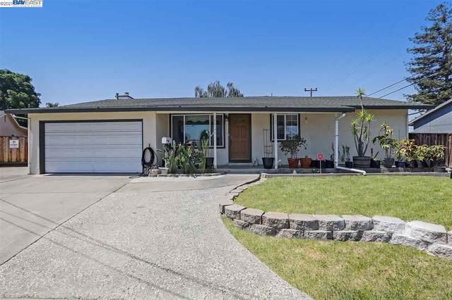 40145 School Ct, Fremont, CA 94538 (#40955521) :: MPT Property
