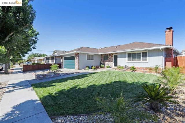 347 Pippo Ave, Brentwood, CA 94513 (#40955561) :: Armario Homes Real Estate Team