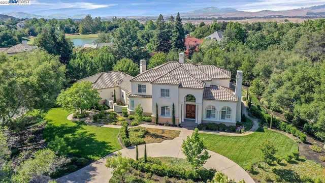 735 Avio Ct, Pleasanton, CA 94566 (#40956861) :: Armario Homes Real Estate Team