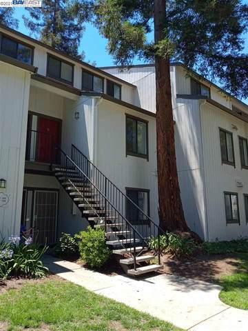 1888 Tradan Dr, San Jose, CA 95132 (#40956913) :: Swanson Real Estate Team   Keller Williams Tri-Valley Realty
