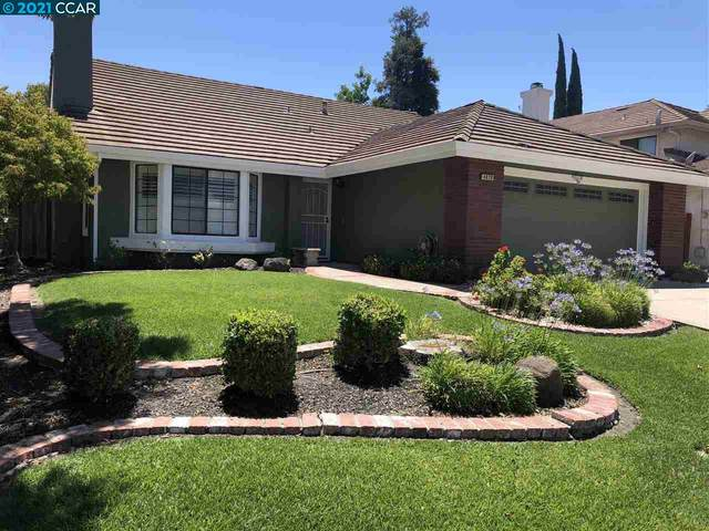 4828 Green Hills Circle, Antioch, CA 94531 (#40957454) :: Excel Fine Homes