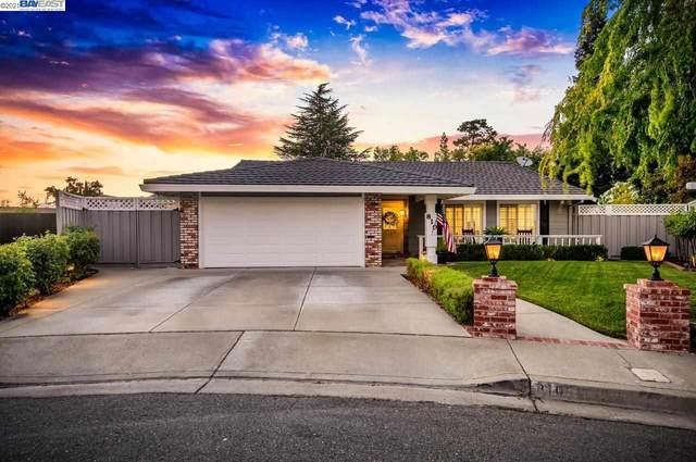 810 Chateli Ct, Pleasanton, CA 94566 (#40957792) :: The Venema Homes Team