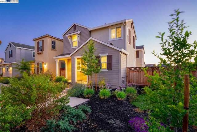 1248 S Tivoli Ln, Mountain House, CA 95391 (#40958059) :: Armario Homes Real Estate Team